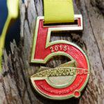 medaille_mehrfarbig_07-e1522318595928
