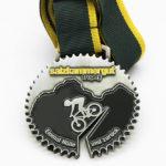 medaille-farbig-salzkammerg