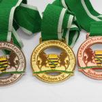 medaille-sachsen-pferdeps